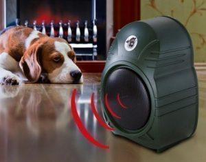 elektronischer Wachhund - Premium, auch für Außenbereich Bewegungsmelder